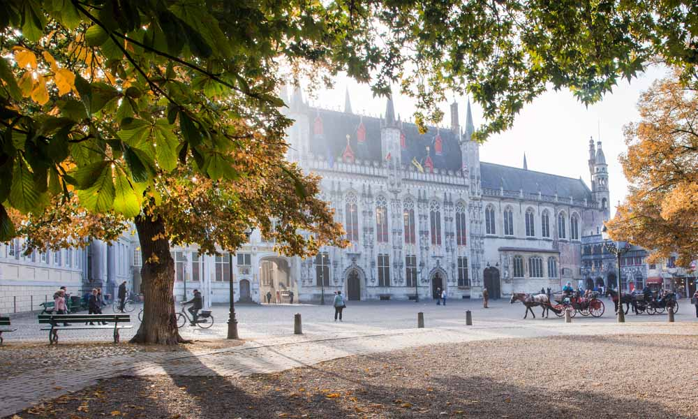 The Burg Square in Bruges with a tree in the foreground