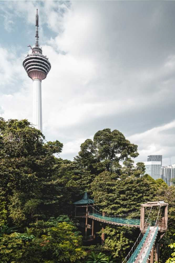 The KL Tower as seen from the Eco Forest Park in Kuala Lumpur.