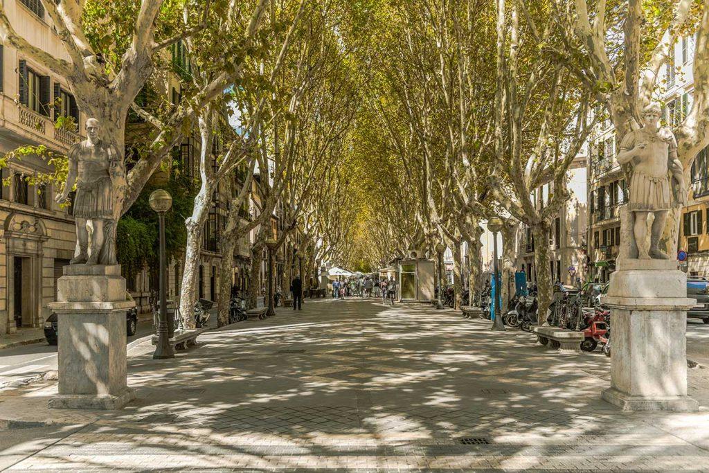 Passeig des Born in Palma de Mallorca