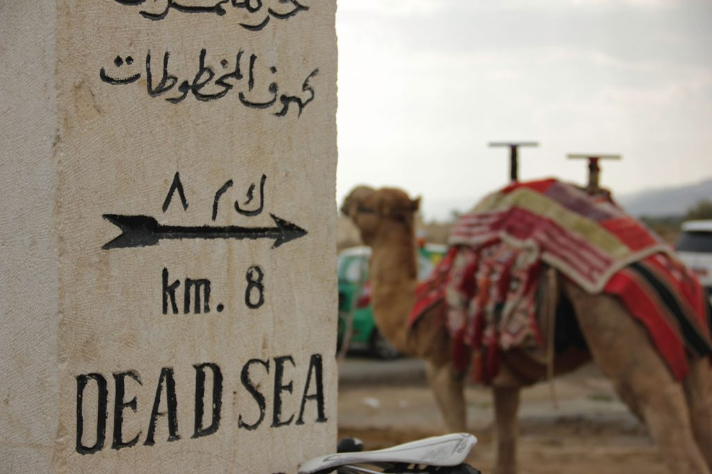 A sign points to the parking lot of a dead sea public beach, a camel stands in the parking lot.
