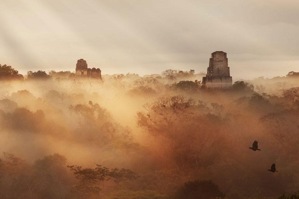 tikal national park at dusk