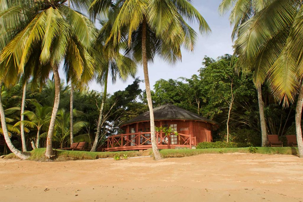 shack on the beach surrounded by palm trees in bom bom principe