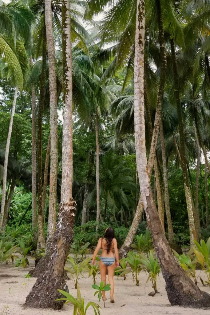 person looking at the trees in praia banana in principe