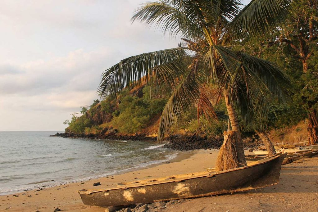 canoe by a palm tree at praia dos tamarindos in sao tome