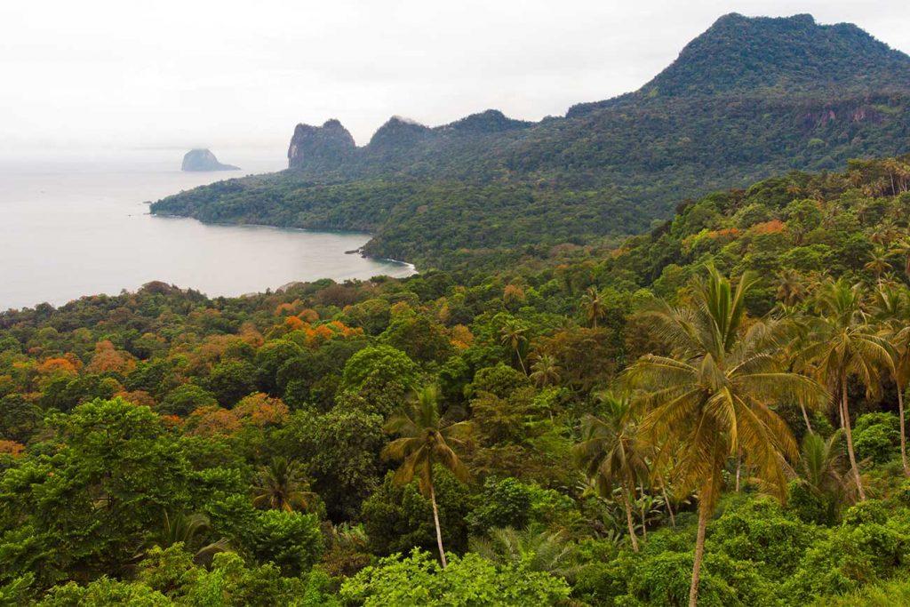 jungle scenery leading to baia das agulhas in principe